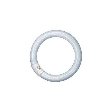 Tubo Fluorescente Circular 22W
